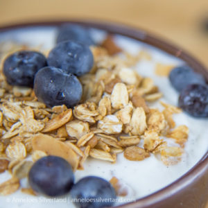 Blueberry and Muesli Vanilla Yoghurt