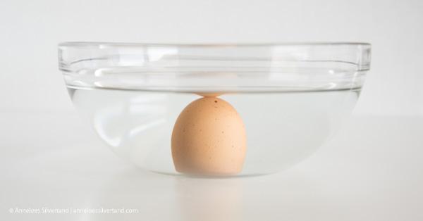 Medium Fresh Egg